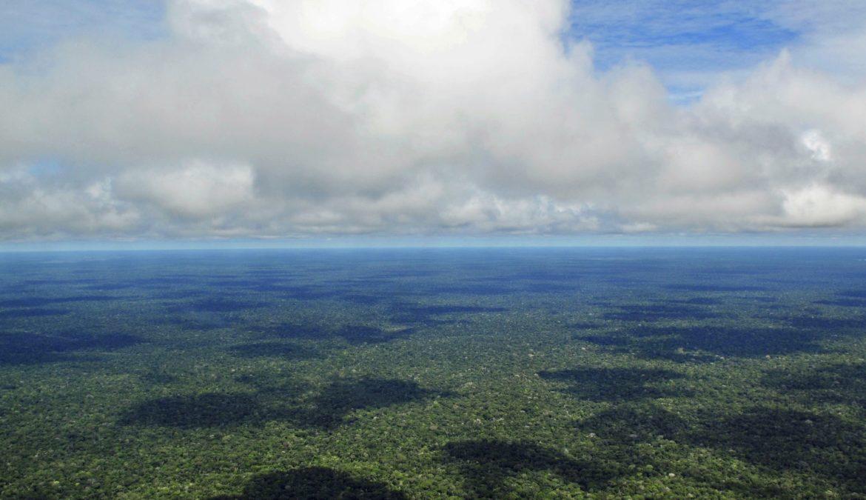 De branden in de Amazone: hoe de media ons misleiden over het klimaat